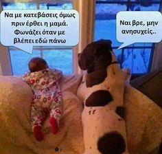 Funny Greek Quotes, Animals, Animales, Animaux, Animal Memes, Animal, Animais, Dieren