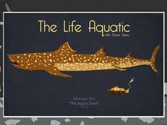 The Life Aquatic with Steve Zissou - 17x11 Jaguar Shark Movie Poster: