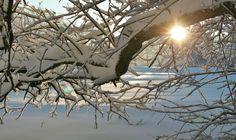 Téli csodák a nemzeti parkokban