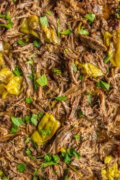 This MISSISSIPPI ROAST is the absolute best slow cooker roast beef you will EVER make! Made famous throughout the years, you just have to try this! Perfect crockpot roast beef for sandwiches, tacos, and beyond! Pot Roast Recipes, Pork Recipes, Family Recipes, Dinner Recipes, Best Slow Cooker, Slow Cooker Recipes, Crockpot Recipes, Best Crockpot Roast, Slow Cooker Roastbeef