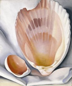 Georiga O'Keeffe: Two Pink Shells / Pink Shell, 1937 Georgia O'Keeffe Museum Alfred Stieglitz, Georgia O'keeffe, Savannah Georgia, Wisconsin, Santa Fe, Georgia O Keeffe Paintings, Seashell Painting, New York Art, Life Form