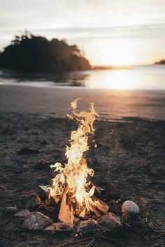 ebony whiite - axxxdam:   earth-dream:  Vancouver Island    Our...