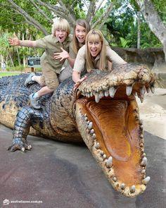 Terri Irwin, the ultimate wildlife warrior