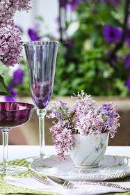 Spring in lavender