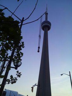 Toronto www.livethelife.es