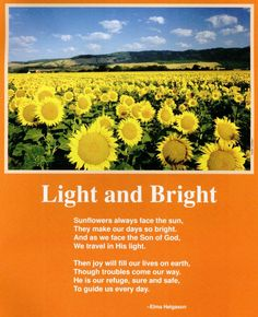 Poem about sunflowers facing the sun by Elma Helgason