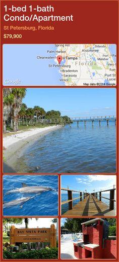 1-bed 1-bath Condo/Apartment in St Petersburg, Florida ►$79,900 #PropertyForSaleFlorida http://florida-magic.com/properties/51887-condo-apartment-for-sale-in-st-petersburg-florida-with-1-bedroom-1-bathroom