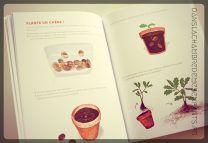 Livres jeunesse - Mon cahier d'observation et d'actiivtés - Les arbres - Editions Nathan