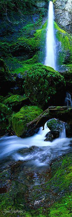 Marymere Falls in the Olympic National Park of northwestern Washington • photo: John Shephard on StoreOEP