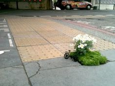Pothole garden. 10 Most Awesome Guerrilla Gardens from Around the World | Environment on GOOD
