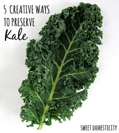 With our quick transition from fall to winter this year, I suddenly found myself with a lot of kale on my hands. The gradual late season harvest I had envisioned months ago when I started the seed… Kale Recipes, Raw Food Recipes, Vegetable Recipes, Healthy Recipes, Healthy Food, How To Cook Kale, Emergency Food Storage, Winter Plants, Veggie Tales