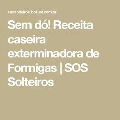 Sem dó! Receita caseira exterminadora de Formigas | SOS Solteiros