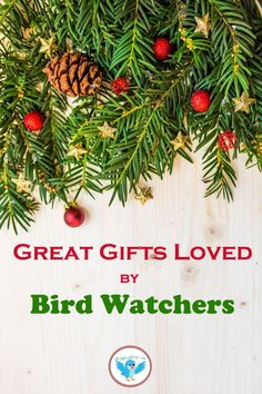 Great Gifts Loved By Bird Watchers - Give bird watchers gifts that help them attract the wild birds they want to see. The best selection - Wild Birds Unlimited, Bird Feeding Station, How To Attract Hummingbirds, Viewing Wildlife, Humming Bird Feeders, All Birds, Backyard Birds, Time To Celebrate, Bird Watching
