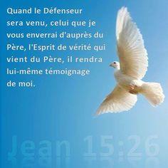 La Bible - Versets illustrés - Jean 15: 26 - Quand le Défenseur sera venu, celui que je vous enverrai d'auprès du Père, l'Esprit de vérité qui vient du Père, il rendra lui  même témoignage de moi.