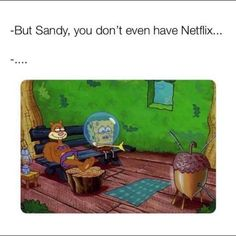 -But Sandy, you don't even have Netflix. Funny Spongebob Memes, Stupid Memes, Funny Memes, True Memes, Spongebob Pics, Stupid Funny, Memes Humor, Spongebob And Sandy, Netflix