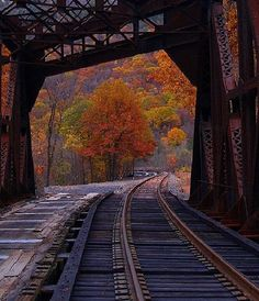 Railroad Track through the bridge