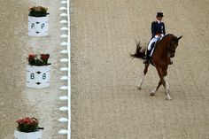 Dressage rider bows out of Olympics mid-event to protect 'my buddy, my friend'  -  August 11, 2016  -     Adelinde Cornelissen of Netherlands riding Parzival competes druing the Dressage Individual Grand Prix event on Day 5 of the Rio 2016 Olympic Games at the Olympic Equestrian Centre on August 10, 2016 in Rio de Janeiro, Brazil.