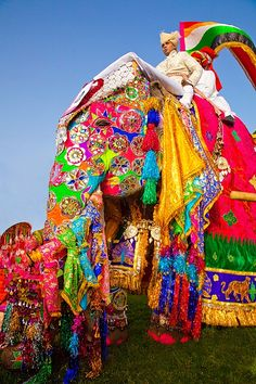 Elephant festival, Jaipur, Rajasthan, India. Do you think the other elephants made fun of him or were they jealous??