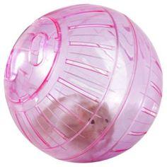Complementos para animales - Bola hamster grande - Complementos para animales