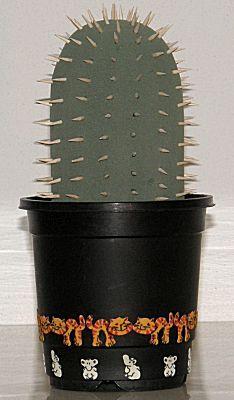 Suprise Oase en sateprikkers cactus