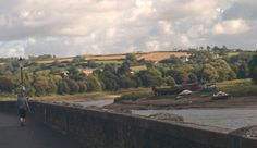 View from Waterfront walk by River Taw