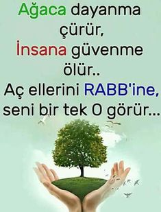 Allah, Quotes, God