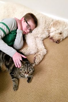 Our pets are a big part of our family.  They're always waiting to greet us when we come home and more than willing to give us a good cuddle whenever we're feeling down. {This is our Golden Doodle, Blue, and Abby the Tabby.} Unfortunately, like our kids, our little fur babies tend to make big messes. …