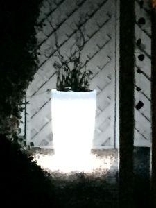 Leuchttopf - beleuchteter Blumentopf #ledtopf #led #illuminated #garden #planters #light #flower