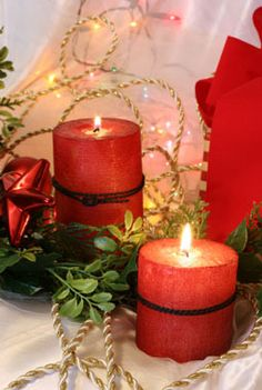 Christmas Splendor Fragrance Oil | Natures Garden Wholesale candle making supplies, soap making supplies Ohio, Fragrance oils