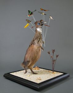 weird taxidermy | Gomez de Molina brings us face-to-face with the impossibility of these ...