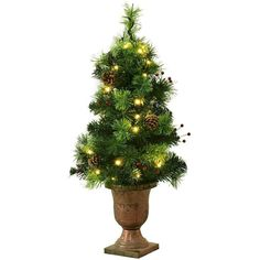 LED Lighted Christmas Tree In Urn With Red Berries & Pine Cones Porch Decoration Christmas Tree In Urn, Christmas Tree Clear Lights, Fiber Optic Christmas Tree, Pine Cone Decorations, Christmas Decorations, Simple Tree, Color Changing Lights, White Led Lights, Red Berries