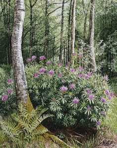 Machine embroidered picture called by Alison Holt BA Textile Artist Thread Art, Thread Painting, Fabric Painting, Fabric Art, Machine Embroidery Quilts, Embroidery Leaf, Creative Embroidery, Landscape Art Quilts, Felt Pictures