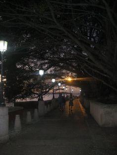 Paseo La Princesa at night. San Juan, Puerto Rico