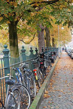 sarphatiepark amsterdam