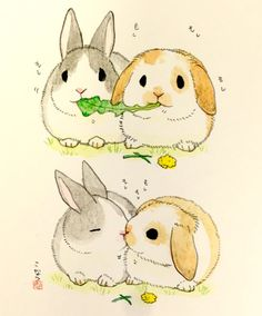 I seriously think our rabbits inspired that lady and tramp scene bcz every bunny owner see this on daily basis, bonded bunnies usually does this with any kind of food whenever they eat together! Cute Animal Drawings, Kawaii Drawings, Cartoon Drawings, Cute Drawings, Bunny Drawing, Bunny Art, Cute Bunny, Adorable Bunnies, Baby Animals