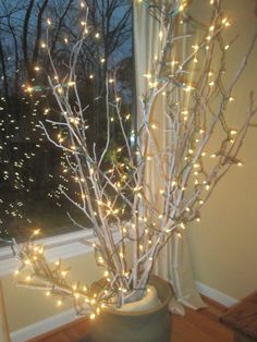 Attractive tree branches for decoration. Living room tree branches for decoration