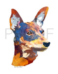 // min pin alert in the shop - this little guy, Goliath, is ready for his forever family! bring him home today Highlands Terrier, West Highland Terrier, Mercer Bears, Pincher Dog, Bear Watercolor, Miniature Pinscher, Digital Collage, Collage Art, Marker Art