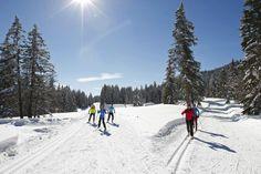 Ski de fond près des Rousses (© Montagnes du Jura)