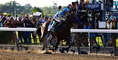 American Pharoah wins the Triple Crown in 2015, becoming just the 13th horse to do so, and the first since Affirmed in 1978
