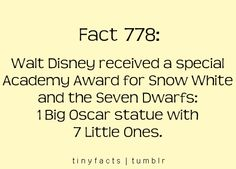Snow White: Walt received a special Academy Award Disney Princess Facts, Disney Fun Facts, Disney And Dreamworks, Disney Pixar, Senior Year Of High School, Punk Disney Princesses, Disney Secrets, Disney Movies, Disney Stuff