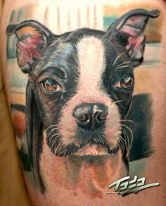 I would definitely get my Boston tattooed on me