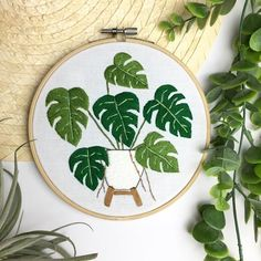 Monstera Plant on Mid-Century Stand Embroidery Hoop Art. Wall/Home/Botanical Deco Embroidery Flowers Pattern, Simple Embroidery, Embroidery Hoop Art, Hand Embroidery Designs, Beaded Embroidery, Hungarian Embroidery, Embroidery Jewelry, Crochets Braids, Learning To Embroider