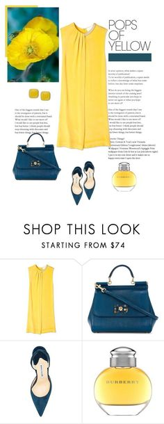 """""""Pops of Yellow"""" by isidora ❤ liked on Polyvore featuring 3.1 Phillip Lim, Dolce&Gabbana, Manolo Blahnik, Burberry, PopsOfYellow and NYFWYellow #manoloblahnikyellow"""