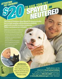 Low cost spay neuter in Delaware