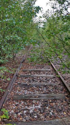 Życie po Dusikowemu: Odkrywania ciąg dalszy i wystawa starych samochodów Railroad Tracks, Vogue, Train Tracks, En Vogue