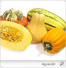 Courge-Nutrition
