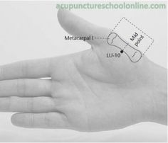 Acupuncture Points: LU-10>  Regulates the Lung Qi  ● Cools Blood Heat  ● Expels pathogenic factors from the throat  ● Descends rebellious Qi  ● Harmonises the Stomach and Heart