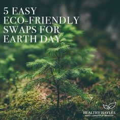 5 easy Eco-Friendly Swaps for Earth Day