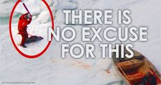 Please urge Prime Minister Trudeau to lift the cloud darkening Canada's birthday celebrations by ending federal subsidies of the commercial seal slaughter.