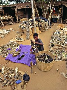 Village of Togo, Africa